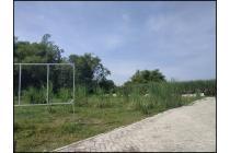 Tanah-Sidoarjo-14