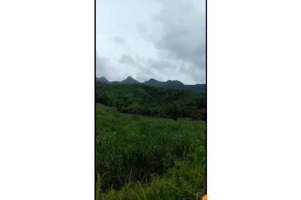 Rp13,7mily Tanah Dijual