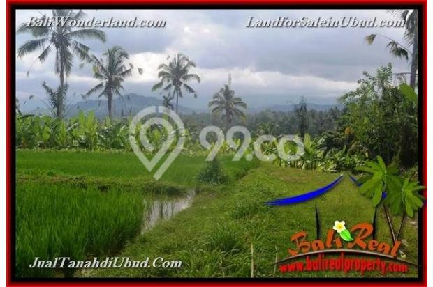 Strategis 250 are View sawah, tebing dan sungai 18273936