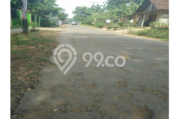 Tanah Kebun Jati di Boja Kendal Semarang Jawa Tengah 12398447