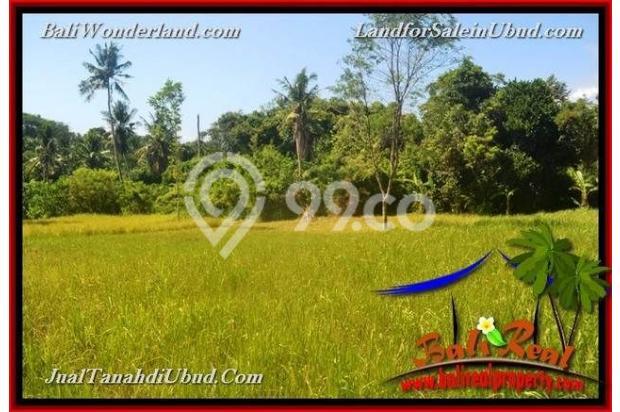TANAH MURAH JUAL di UBUD BALI 40 Are View Kebun / tebing 18447609