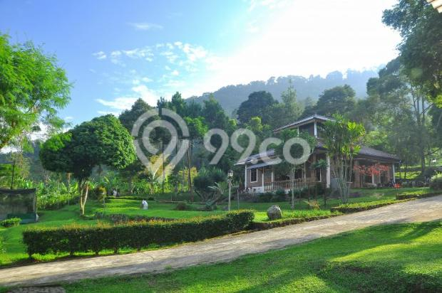 Villa Lingga 1 19815676