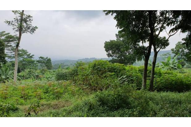 Rp15,1mily Tanah Dijual
