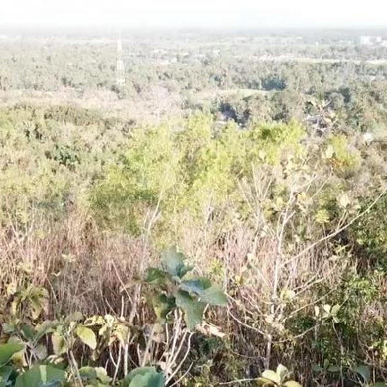 Tanah  untuk resort resto villa di jalan pajangan jalan bandara NYIA