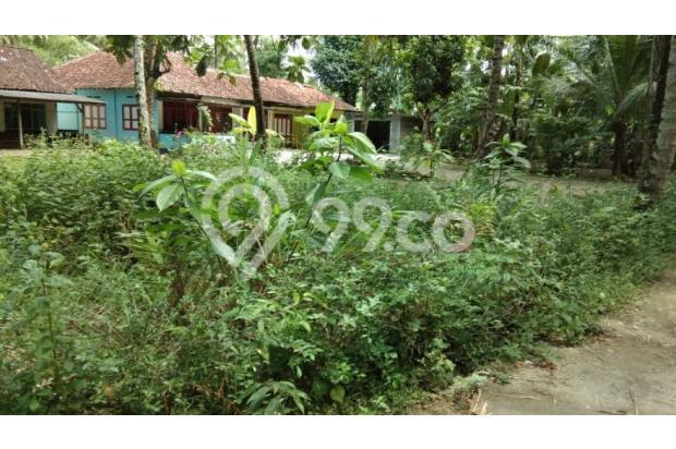 Tanah Kulon Progo, Investasi Tepat 18275008