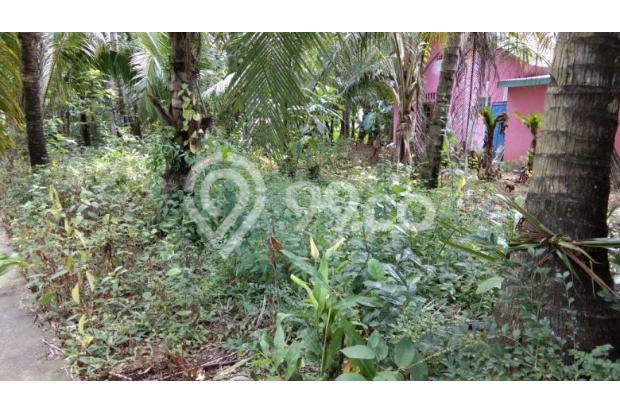 Tanah Kulon Progo, Investasi Tepat 18275010