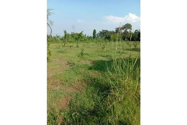 Rp3,6trily Tanah Dijual