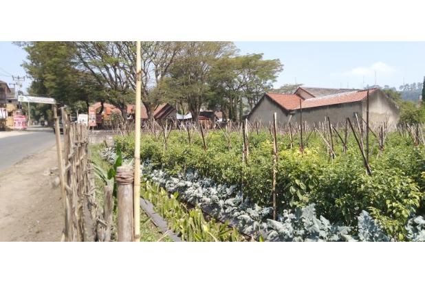 Rp4,51mily Tanah Dijual