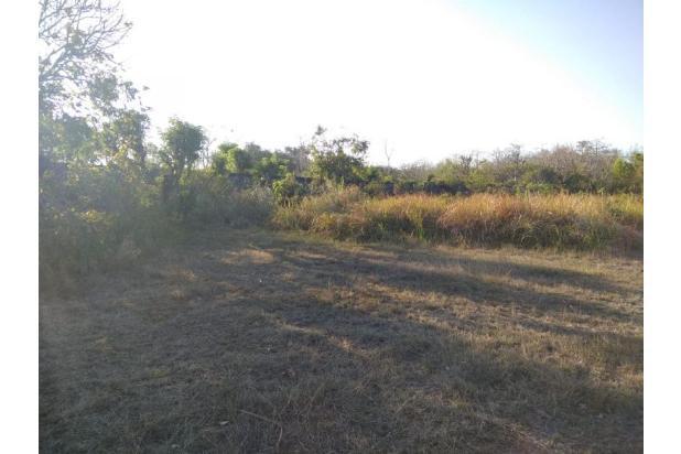 Rp71,5mily Tanah Dijual
