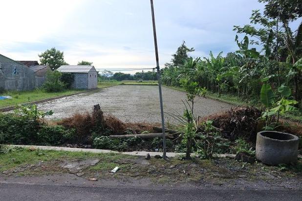Rp4,59mily Tanah Dijual