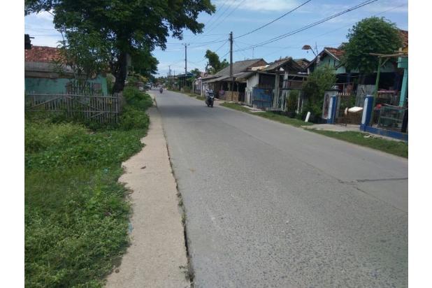 Tanah Kering Setia Mulya Tarumajaya Bekasi Utara 15518393