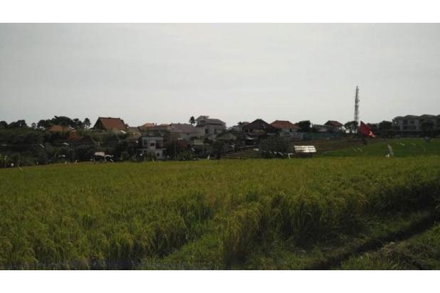 Dijual Tanah Dikawasan Lingkungan Villa Jalan Pantai Brawa Canggu 17995736