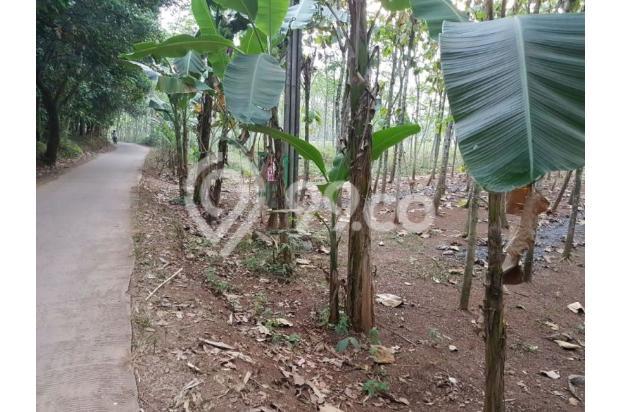 Dijual Tanah Kavling Siap Bangun & bersertifikat SHM.. 13244355
