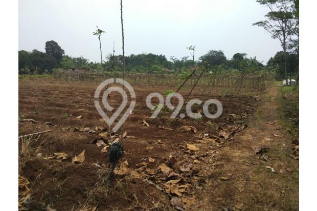 Dijual Tanah Kavling Siap Bangun & bersertifikat SHM.. 13244357
