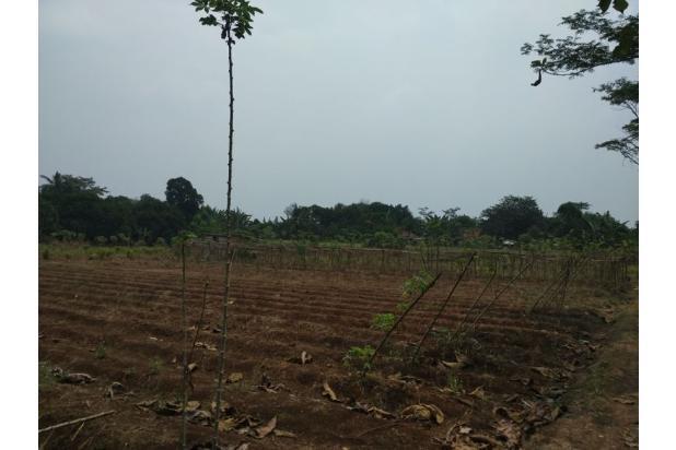 Dijual Tanah Kavling Siap Bangun & bersertifikat SHM.. 13244359