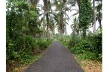 Tanah Luas Strategis di Desa Piobang, Payakumbuh, Sum.Bar
