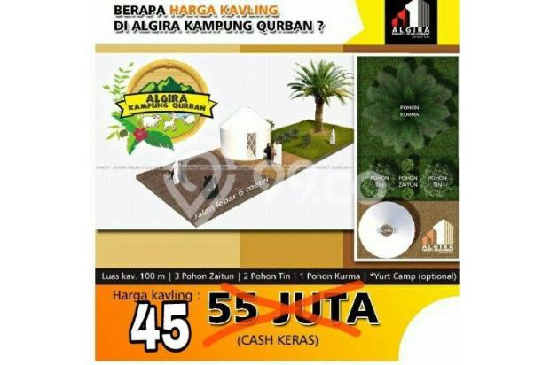 Kavling Wisata ternak di Bogor Algira Kampung Qurban 12640475