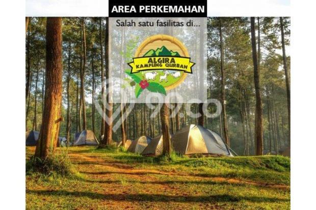 Kavling Wisata ternak di Bogor Algira Kampung Qurban 12640476