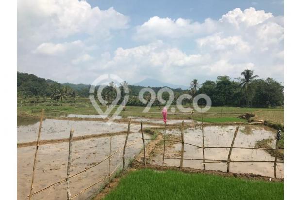 Kavling Wisata ternak di Bogor Algira Kampung Qurban 12640480