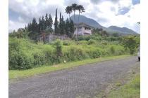 Tanah Panderman Hill Batu