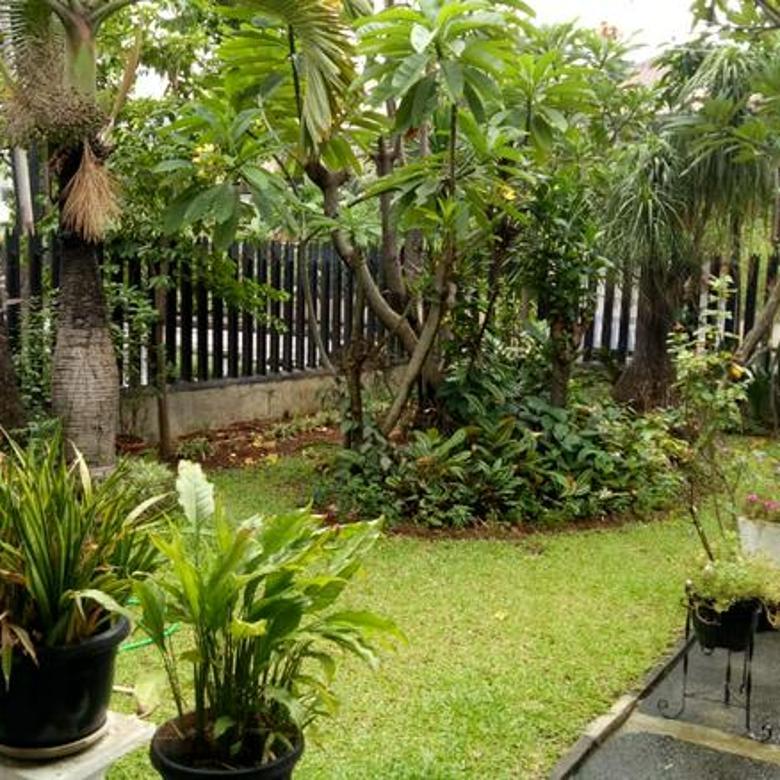 Rumah Murah, Mewah, Asri, Terawat di Cempaka Putih Jakarta Pusat