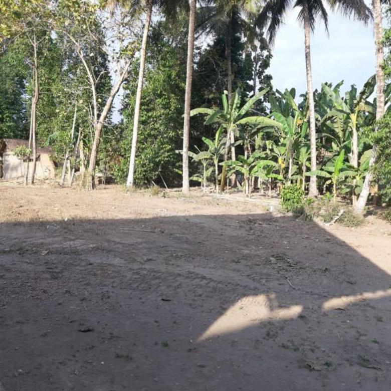 Tanah Perkarangan Murah Strategis di  Margodadi Seyagan
