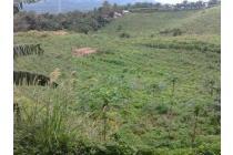 Tanah dijual cepat di Sukabumi