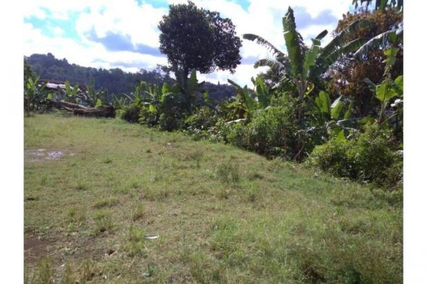 Tanah Murah Dibawah HargaPasar 3.500.000/mtr,Lokasi Strategis DAGO BANDUNG. 11019128