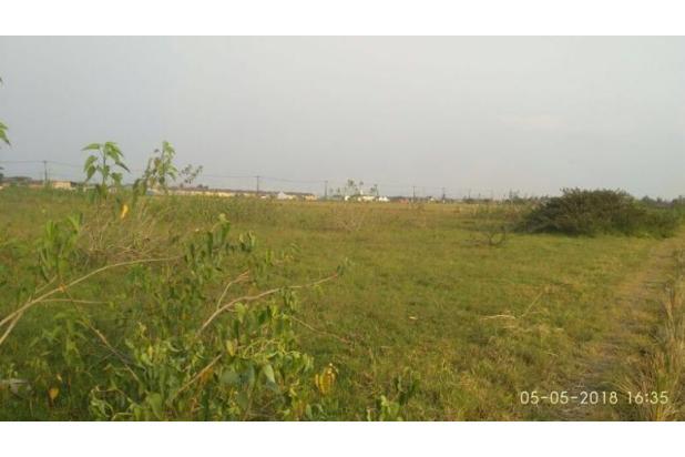 lahan sawah kering berbatasan langsung dengan perumahan  17995648
