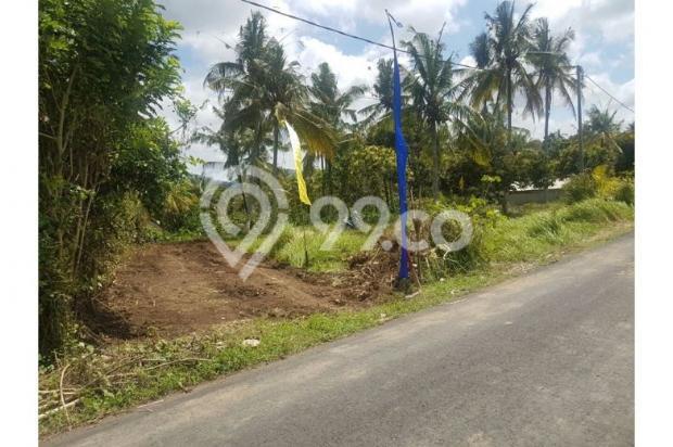 Kavling Bonian Pinggir Jalan Desa 8400908