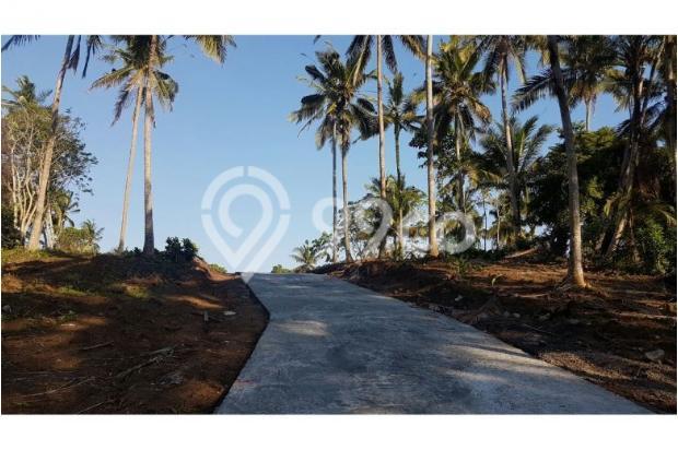 Kavling Bonian Pinggir Jalan Desa 8400913