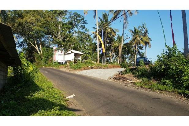 Kavling Bonian Pinggir Jalan Desa 8400909