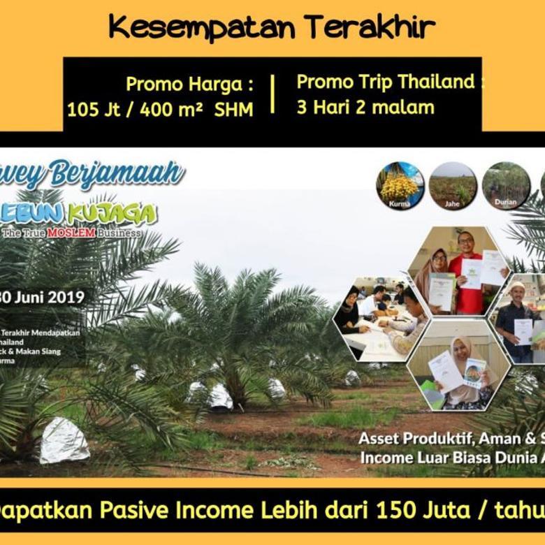Investasi Kebun Kujaga dengan Passive income