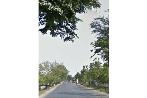 Rp125mily Tanah Dijual