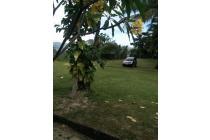 Vila-Lombok Barat-10