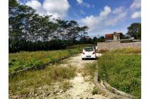 Tanah Di Jln Jalan Raya Tuka Badung Bali,Dekat Ke Canggu Bali
