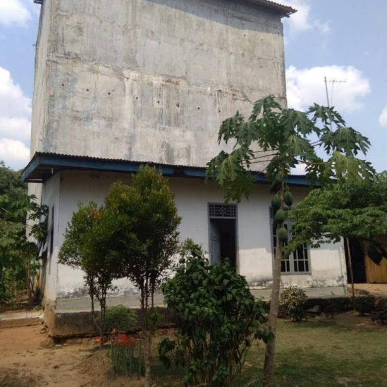 Rumah Sarang Walet Istimewa Lampung