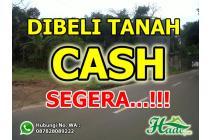 Dibeli Cash Tanah