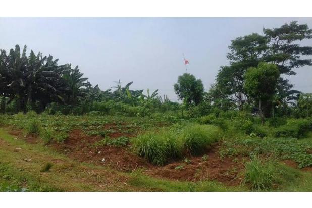 Rp208mily Tanah Dijual