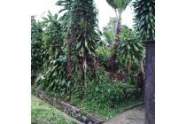 Tanah-Sukabumi-8