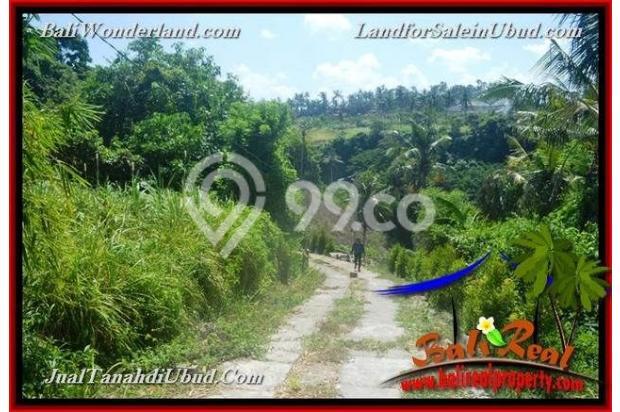 View Tebing dan sungai 4,900 m2 di Ubud Gianyar 18273694