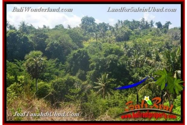 View Tebing dan sungai 4,900 m2 di Ubud Gianyar 18273691
