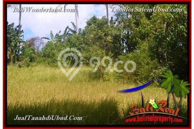 View Tebing dan sungai 4,900 m2 di Ubud Gianyar 18273693