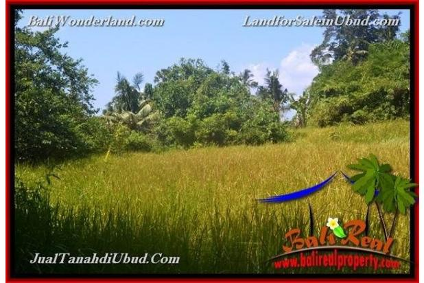 View Tebing dan sungai 4,900 m2 di Ubud Gianyar 18273692
