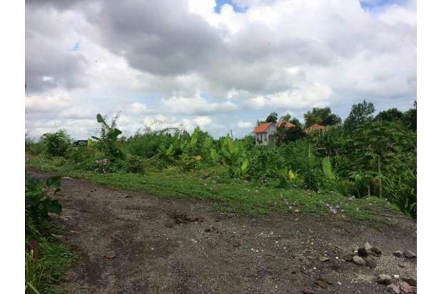 Dijual Tanah Di Buduk, Mengwi 14418323