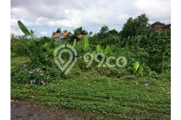 Dijual Tanah Di Buduk, Mengwi 14418325