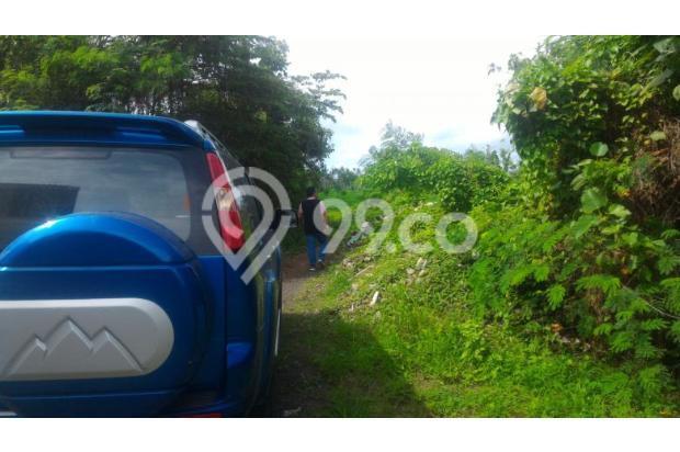 Dijual Tanah Di Buduk, Mengwi 14418330