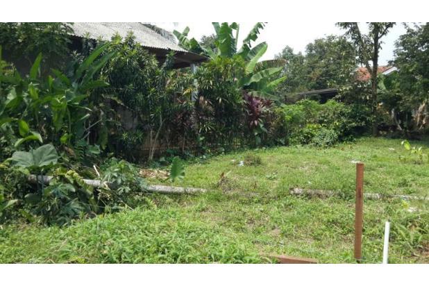 Tanah Kavling Pasir Putih, Pilihan Tepat untuk Investasi 13243605