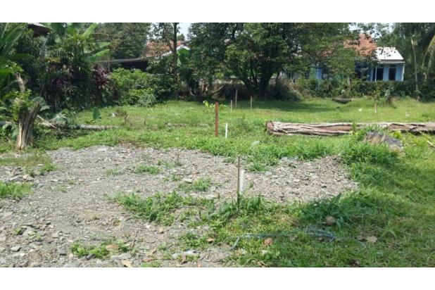 Tanah Kavling Pasir Putih, Pilihan Tepat untuk Investasi 13243607
