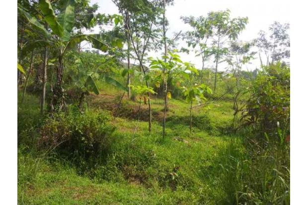 Rp2,7mily Tanah Dijual